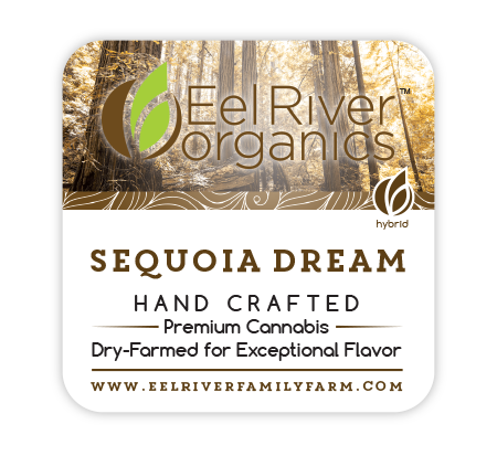 Sequoia Dream