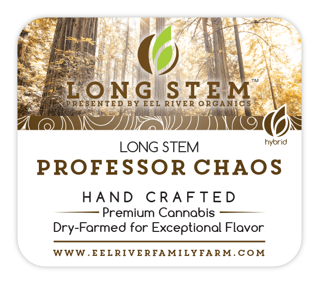 Long Stem Professor Chaos